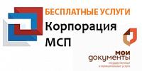banner MSP